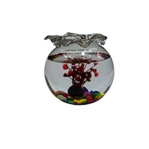 Jainsons Glass Fish Bowl With Baby Plant Multi-Color Stone & Artificial Fish (6 inch, Red)
