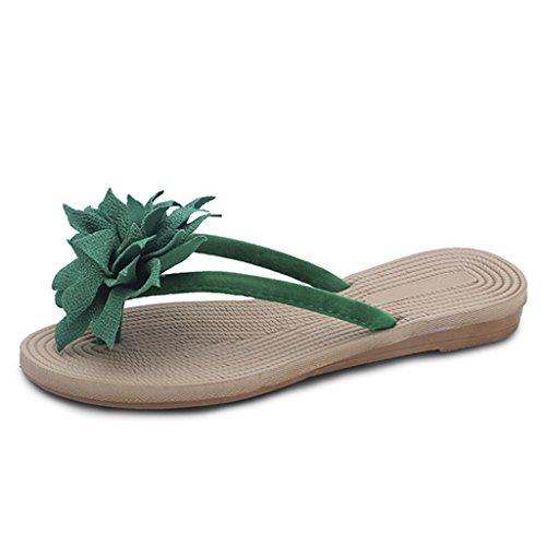 GIY Womens Ladies Flip Flops Slippers Anti-Slip Slip On Dressy Thongs Summer Beach Casual Flat Sandals by GIY