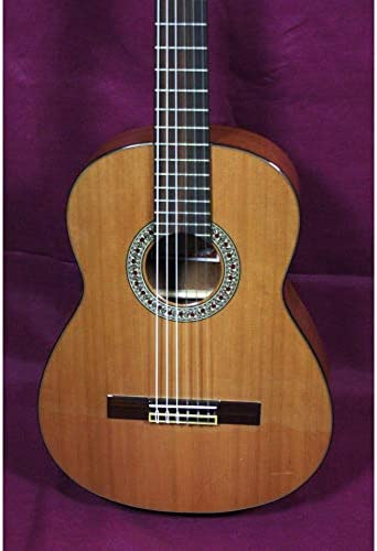 Prudencio Saez PS610 – Guitarra clásica 7/8: Amazon.es ...
