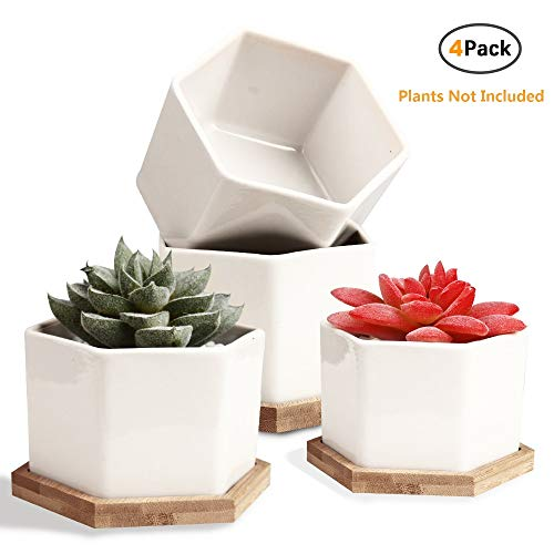 Succulent Pots, OAMCEG 4 Inch Succulent Planters, Set of 4 White Ceramic Succulent Cactus Plant Pots with Bamboo Tray Plants NOT Included