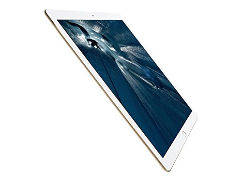 Apple iPad 32GB Wi Fi Gold product image