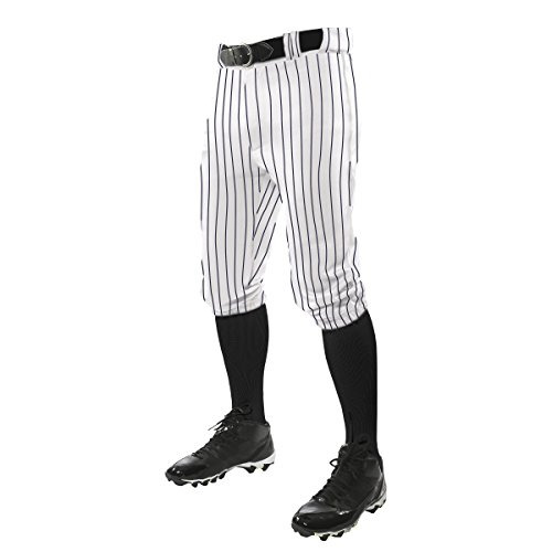 Baseball Pinstripe Jersey - CHAMPRO Men's Adult Triple Crown Pinstripe Knicker, White/Navy, Large