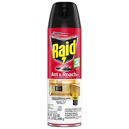 Raid Ant and Roach Killer, Fragrance Free, 17.5 OZ (Pack - 1)