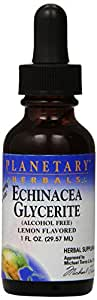 Planetary Herbals Echinacea Glycerite Mineral Supplement, Lemongrass, 1 Fluid Ounce