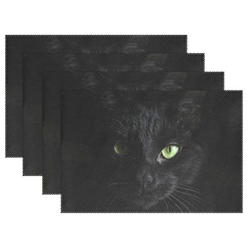 - Fengye Placemats Black Cat View Kitchen Table Mats Resistant Heat Placemat for Dining Table Washable 12