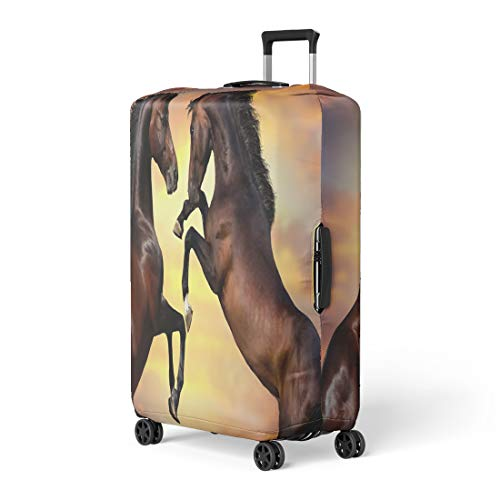 Pinbeam Luggage Cover Two Bay Stallion Long Mane Rearing Up Against Travel Suitcase Cover Protector Baggage Case Fits 18-22 inches