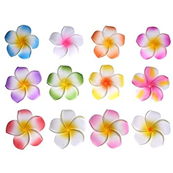 "f51e245c2 Image Unavailable. Image not available for. Color: Youbami 2.35"" Hawaiian  Plumeria Foam Flower Hair Clip ..."