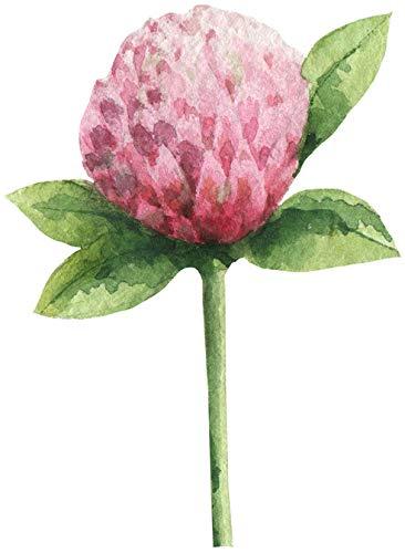 Beatuiful Green Garden Plant Watercolor Art Vinyl Sticker, Tumeric