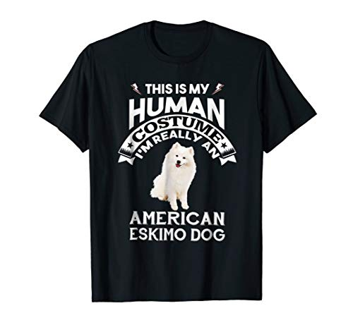 My Human Costume I'm Really An American Eskimo Dog -