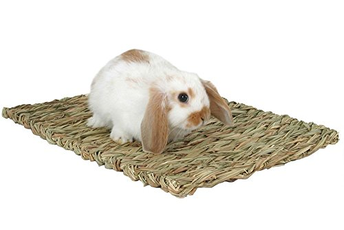 Peters Woven Grass Mat for Rabbits (Peters Grass Ball)