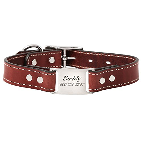 dogIDS Chestnut Brown Personalized English Bridle Leather Dog Collar with Engraved ScruffTag Nameplate - Fits Neck Sizes of 18-22 Inches