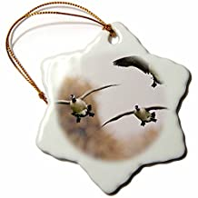 orn_92849_1 Danita Delimont - Birds - Canada geese, birds, Oxbow Lake, Albuquerque, NM - US32 LDI0007 - Larry Ditto - Ornaments - 3 inch Snowflake Porcelain Ornament