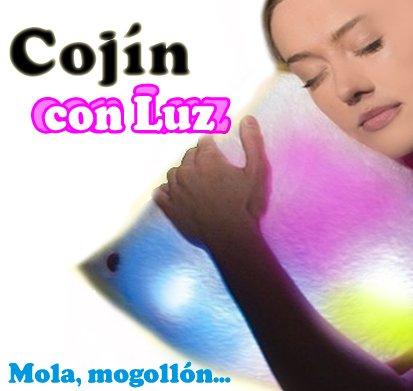 Cojín Guay Molon