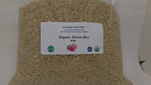 Brown Rice 20 Pounds (Twenty lbs) Long Grain USDA Certified Organic Non-GMO, Gluten Free, GF, BULK by Mulberry Lane Farms