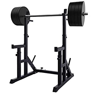 Boddenly Adjustable Squat Rack Stands Multifunction Barbell Bench Press Dipping Station