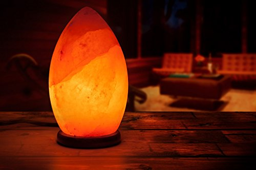 [Hand Crafted] HemingWeigh Natural Himalayan Crystal Salt Rock Oval Lamp with Wood Base