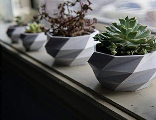 Autodesk - Macetero de Fibra de poliéster para decoración del hogar, Oficina, Cocina y jardín, macetas pequeñas: Amazon.es: Jardín