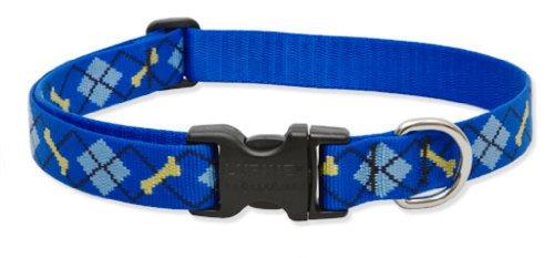 "LupinePet Originals 1"" Dapper Dog 12-20"" Adjustable Collar for Medium and Larger Dogs"