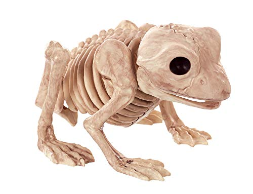 Crazy Bonez Skeleton Frog Bonez