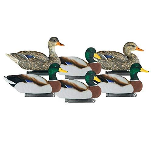 Dakota Decoys X-Treme Fully Flocked Mallard Duck Decoys 6 Pk
