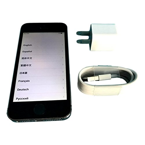 Apple 5S Straight Talk Wireless Service