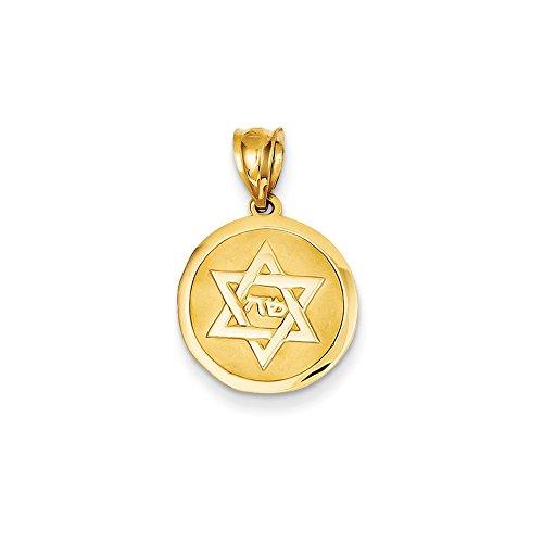 Star Of David Medal Pendant Jewish Charm Religious Fashion 14K Yellow Gold ()