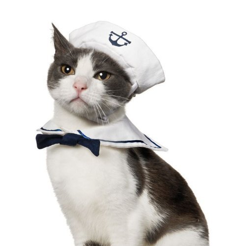 Enjoying Cat Dog Sailor Costume Hat Navy Tie Collar Adjustable (Cats Costume)