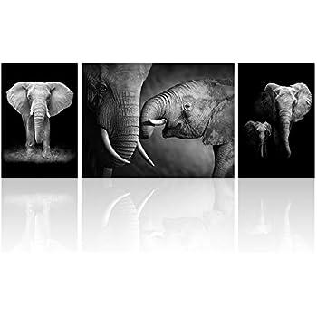 Visual art decor animal canvas wall art decor black and white elephant picture on canvas elephant