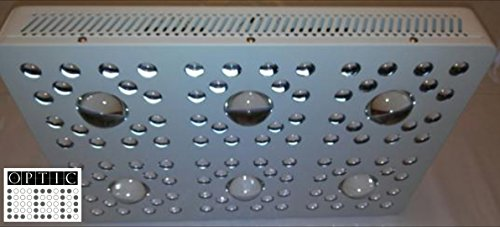 OPTIC LED OPTIC 6 COB LED Grow Light 620W (Optic Led)