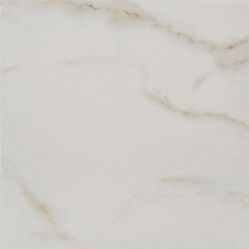 Michelangelo White 12 in. x 12 in. Porcelain Floor and Wall Tile (14.33 sq. ft. / case) (White Florida Flooring)