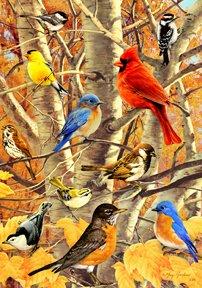 Songbird Gathering - Fall Birch & Birds - 28 Inch By 40 Inch Large Decorative Flag