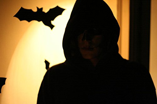 (Quality Prints - Laminated 36x24 Vibrant Durable Photo Poster - Halloween Dark Silhouette Myself in My 2005 Halloween Costume. This Year I Went for Scary, but darn was The Mascara)