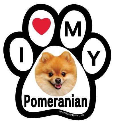 Love My Pomeranian Paw Magnet