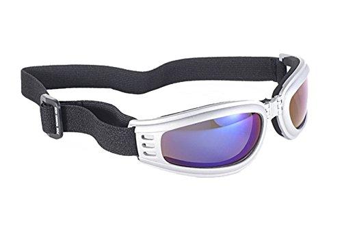 Kickstart Nomad Blue Mirror Lens Silver Frame Goggles w/ Strap