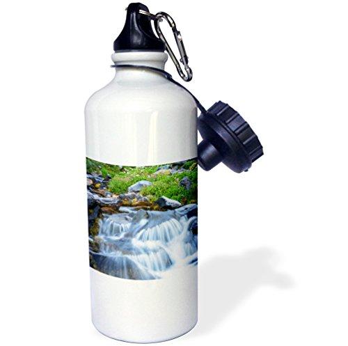 Danita Delimont - Waterfall - Wildflowers, Mt. Rainier National Park, Washington State, USA - 21 oz Sports Water Bottle (Stream Mt Rainier National Park)