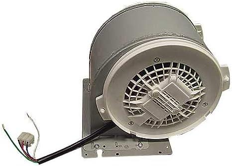 Siemens – Motor ventilador completo – 00495859: Amazon.es: Grandes ...