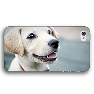 Golden Retriever or Yellow Labrador Dog Puppy For Ipod Touch 4 Case Cover Slim Phone Case
