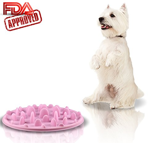 Slow Feed Dog Bowl - FDA Approved Bloat Remedy will Guarantee Slower Feeding time - Great for Cats (Pink, Large)