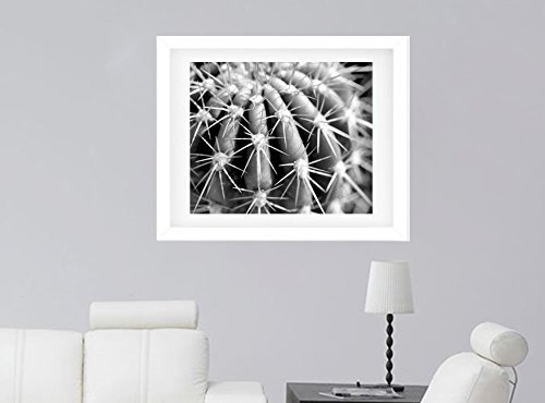 Black and White Wall Decor, Cactus Photography Art Print, Macro Photography Print, Modern Wall Art, Abstract Artwork by Natural Photography Spa