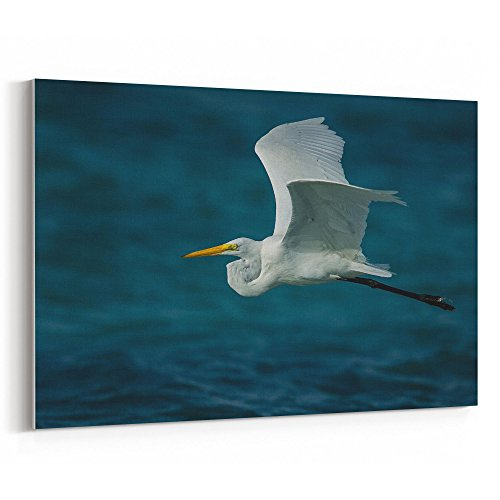 Wrap Shutter (Westlake Art - Bird Beak - 12x18 Canvas Print Wall Art - Canvas Stretched Gallery Wrap Modern Picture Photography Artwork - Ready to Hang 12x18 Inch (3342-81AEF))