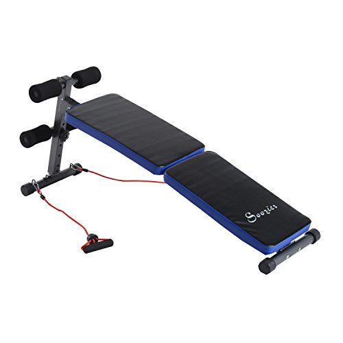 Soozier Folding Decline Weight Bench Sit Up Ab Workout Fitness Adjustable Home - York Lounge Chair