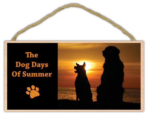 Wooden Decorative Pet Sign: The Dog Days of Summer | Dogs, Gifts, Decorations ()