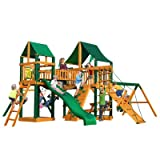 Pioneer Peak Swing Set with Timber Shield