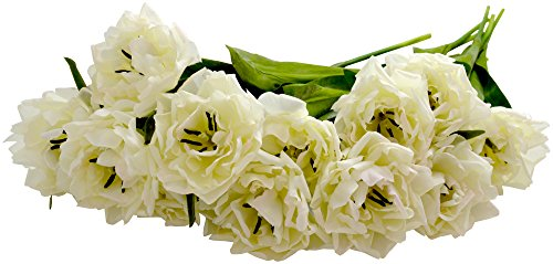 Sia Bloomed Tulips, 12 Stems, Cream, 18-Inches Tall