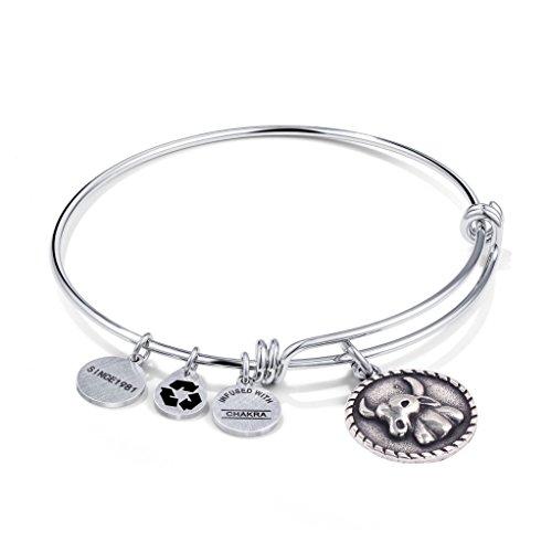 qunlianshangmao Taurus Zodiac Bracelet Jewelry Stainless Steel Adjustable Constellation Gift Bracelets Bangles for Women Girls