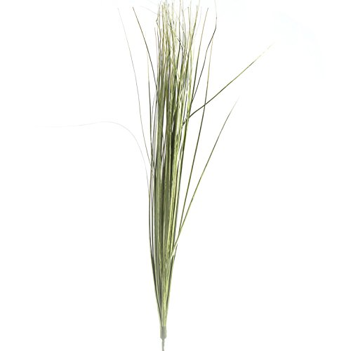 Group of 12 Tall and Whispy Dried Meadow Grass Picks for Embellishing Florals, Crafts, and Displays - Dried Grass