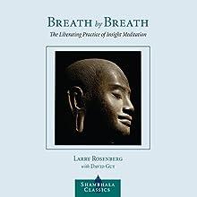 Breath By Breath: The Liberating Practice of Insight Meditation Audiobook by Larry Rosenberg, David Guy, Jon Kabat-Zinn (foreward) Narrated by Edoardo Ballerini