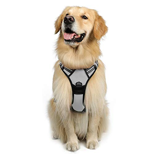 """rabbitgoo Dog Harness, No-Pull Pet Harness with 2 Leash Clips, Adjustable Soft Padded Dog Vest, Reflective No-Choke Pet Oxford Vest with Easy Control Handle for Large Dogs, Gray (L, Chest 20.5-36"""")"""