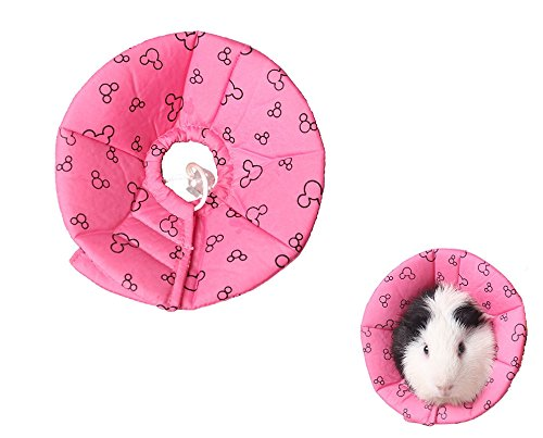 Hamster Rabbit Protection Cone Neck Recovery Collar - Small Animal Pets Elizabethan Collar Anti-Water Bite Sratch Risistant for Guinea Pig Mice Mouse Rats Ferret Squrrel (L, ()