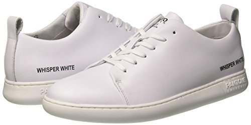 – Collo A Nyc Adulto Basso White Sneaker Unisex Bianco whisper Pantone YnxpCqTwn